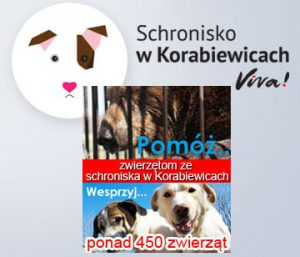 schronisko-w-korabiewicach3